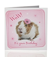 Value Photographic Hamster Kids Birthday Card