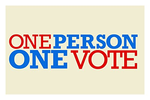 One-Person-One-Vote-Political-Poster-12x18