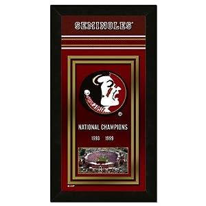 NCAA Championship Banner NCAA Team: FSU
