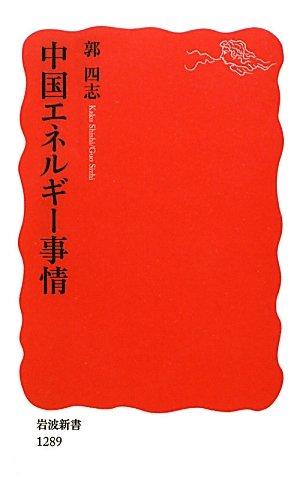 中国エネルギー事情 (岩波新書)