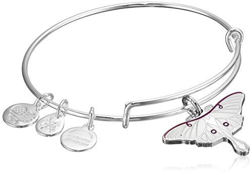 alex-and-ani-luna-moth-expandable-rafaelian-shiny-silver-bangle-bracelet