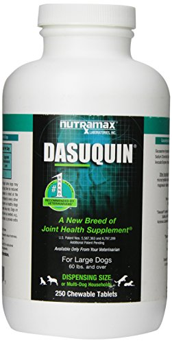Nutramax Dasuquin 250 Count Chew Tablets For Large Dogs