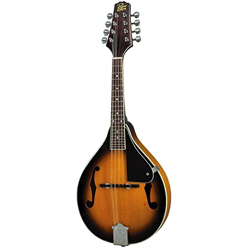 Johnson Mandolin A-Style with F Holes Sunburst