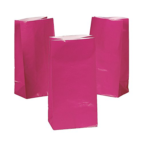 12 Paper Bags - Fuchsia (Hot Pink) Party Favor Treat Bags