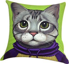 """Artiwa Funny & Cute Kitty Cat Cotton & Soft Velvet Sofa Couch Throw Decorative Pillow Cover 18""""X18"""" Green front-540921"""
