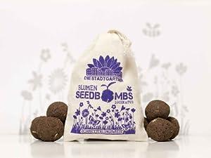"""Seedbombs """"Schmetterlingseiese"""", 10 walnussgroße & handgemachte Samenbomben"""