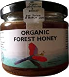 Tropical Forest Organic Honey 340g