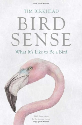 Bird Sense: What It's Like to Be a Bird [Hardcover]