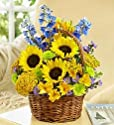 Buy Flowers Online