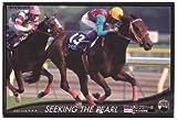 オーナーズホース/OWNERS HORSE【シーキングザパール】OH01-H1029