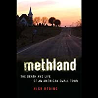 Methland: The Death and Life of an American Small Town (       UNABRIDGED) by Nick Reding Narrated by Mark Boyett