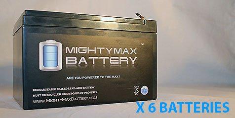 Belkin F6C1000Ei-Tw-Rk 12V 12Ah F2 Lead Acid Battery - 6 Pack