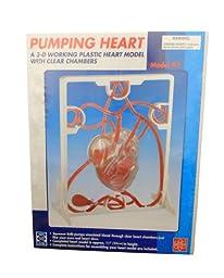 Ajax Scientific AN090-0000 Three-Dimensional Plastic Pumping Heart Model Kit, 11\