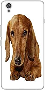 Snoogg Dachshund Staring Portrait Designer Protective Back Case Cover For One...