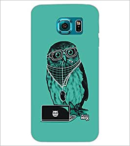 PrintDhaba Owl D-5401 Back Case Cover for SAMSUNG GALAXY S6 (Multi-Coloured)