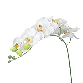 Tinksky Simulation Butterfly Orchid Artificial Flower Plant Home Decoration (White)
