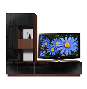 Scarlett L TV Stand - Open and Closed Storage Space