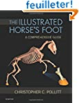 The Illustrated Horse's Foot: A compr...