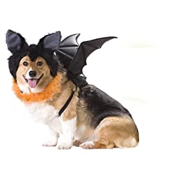 Dog Bat Puppy Animal Planet Pet Costume Size Small