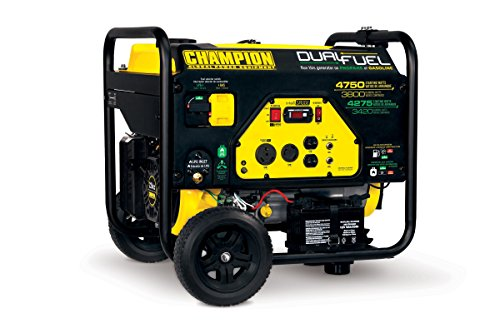 Champion Power Equipment 76533 3800 Watt Dual Fuel RV Ready Portable Generator with Electric Start (Champion Generator Dual Fuel compare prices)