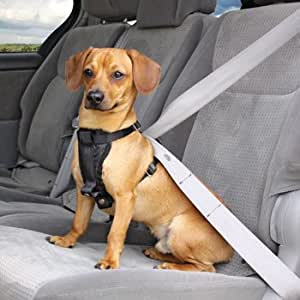 Petco premium seat belt harness pet vest for Does petco sell fish