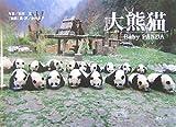 大熊猫―赤ちゃんパンダ