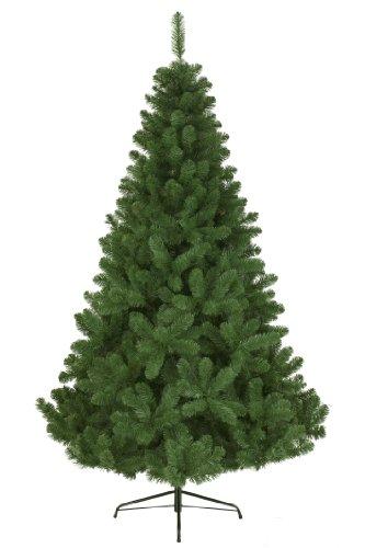 everlands-680311-baum-imperial-pine-s