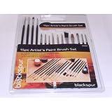 Blackspur 15Pc Assorted Artist Brushes