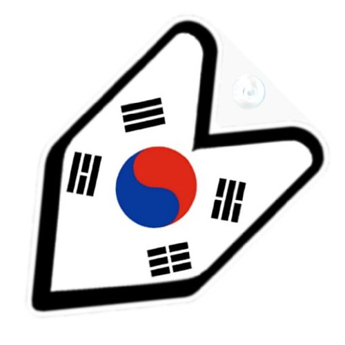 Amazon.com: JDM Korea Korean Flag Car Decal Badge