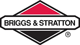BRIGGS AND STRATTON 807639 CARBURETOR