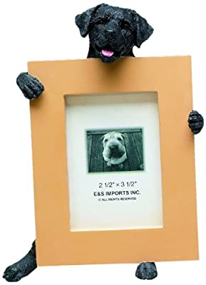 Black Lab Picture Frame Holds Your Favorite 2.5 by 3.5 Inch Photo, Hand Painted Realistic Looking Black Lab Stands 6 Inches Tall Holding Beautifully Crafted Frame, Unique and Special Black Lab Gifts for Black Lab Owners