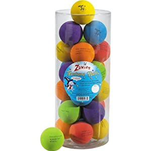 Zanies ZW13134 24-Piece Fortune Assorted Canister Set Balls for Pets