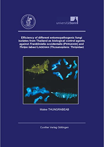 efficiency-of-different-entomopathogenic-fungi-isolates-from-thailand-as-biological-control-agents-a