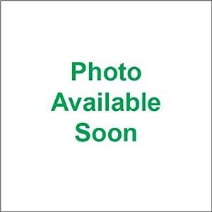 Bridgestone/Firestone BT022-F 120/70ZR17 K1600GT FRT 21642