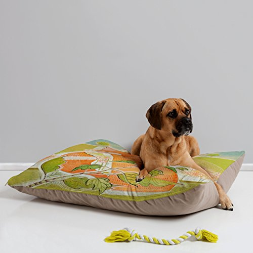 Deny Designs Cori Dantini Little Fox Pet Bed, 40 By 30-Inch front-638981