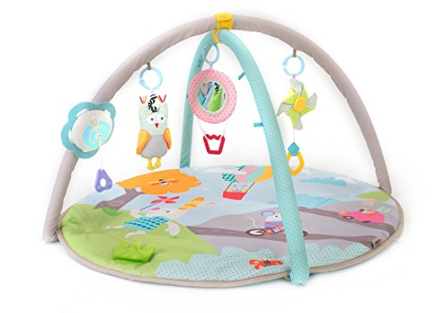 Taf Toys Baby Play Gym Thickly Padded with Colorful Lights and Sounds