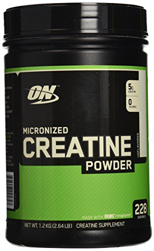 Optimum Nutrition Micronized Creatine Powder — 1200 g