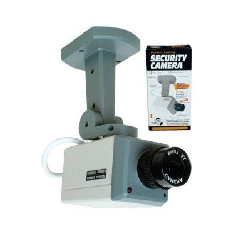 Novelty Security Camera - 1