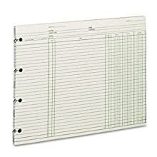 Wilson Jones GN2DA Green End-Balance Ledger Form Paper, Both Sides Alike, Punched for Post Binders, 9-1/4&#034; X 11-7/8&#034;, 100 Sheets/Pack