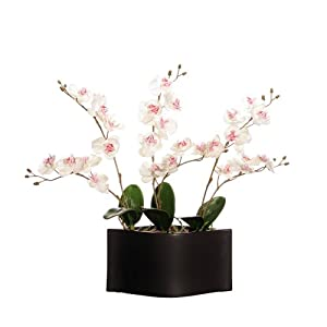 Vickerman AZF11141 White Orchids in Black Artificial Plant, 20-Inch at Sears.com
