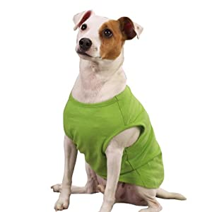 Zack & Zoey Parrot Green Polyster Basic Dog Tank, X-Large