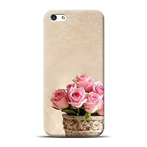 Mobile Back Cover For Apple iPhone 5c (Printed Designer Case)