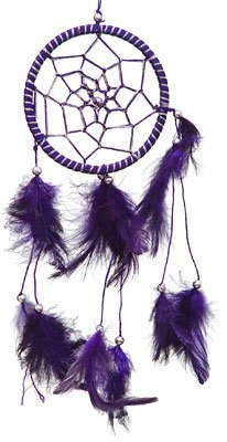 DreamCatcher ~ Purple DreamCatcher with Feathers ~ Approx 3.5