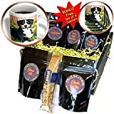 Dogs Appenzeller Mountain Dog - Appenzeller Mountain Dog - Coffee Gift Baskets - Coffee Gift Basket