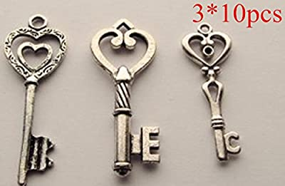Salomé Idea@new large 30pcs Antique Vintage Skeleton Keys in Antique Bronze Color,3 Different Style, with Free Gift--cup Mat*1 (large, silver1)
