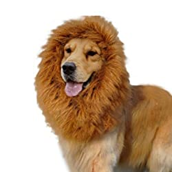 Futaba Dog Lion Mane Wig Costume -Small Puppy