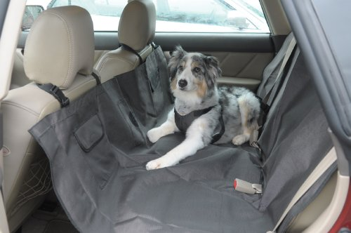 Amazon Car Seat Dog Sling