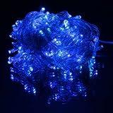 10M 100 LED Fairy Light String Christmas Lights (Blue)