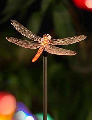 BRIGHT ZEAL Solar Powered Garden Stake Light With Vivid Figurines In Life  Sizes   Dragonfly