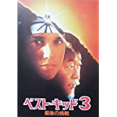 【映画パンフ】ベストキッド3 ジョン・G・アビルドセン ラルフ・マッチオ